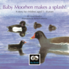 Baby Moorhen makes a splash!